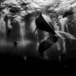 National Geographic показал лучшие фото путешественников по 2015 год