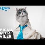 Опубликован трейлер фильма «Девять жизней» с Кевином Спейси в роли кота