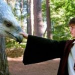 Все фильмы о Гарри Поттере собрали в одно 78-минутное видео